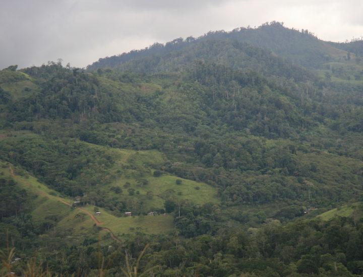Ridgeline in El Cua Reserve